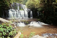 New Zealand _ South Island _ Southland _ The Catlins _ Purakaunui falls