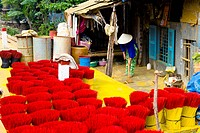 Vietnam _ The South _ The Delta of Mekong _ Rach Gia Region _ Route of Long XuyÛn _ Craft industry _ Incense fabrication