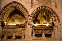 Spain _ Castile and Leon _ Salamanca _ Ancient Cathedral _ Catedral Vieja _ Enfeu niche sheltering a tomb