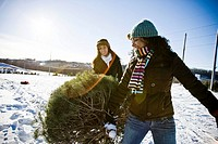 Two teenage girls 16_17 hauling pine tree over snow