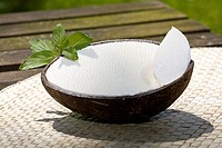 Coconut ice cream in a coconut shell