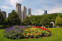 Flowers in a garden with skyscrapers in the background, Navy Pier, Chicago, Illinois, USA