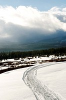 High angle view of tire track in snow, West Yellowstone, Gallatin County, Montana, USA