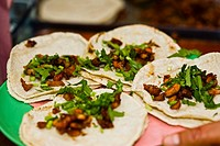 Close_up of four Mexican tacos on a plate, Cuetzalan, Puebla State, Mexico