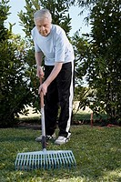 Senior man raking in a garden