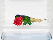Champagne and rose in fridge close_up