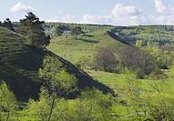 Hilly landscape., Degeberga, Skåne, Sweden