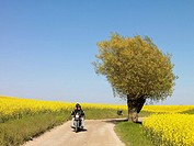 Motorcycle driving in agriculture landscape, Skåne, Sweden