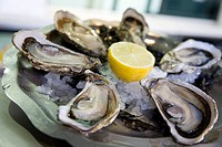 France, Cote d´Azur, Nice, Fresh Oysters