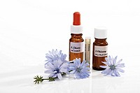 Bottles with Bach Flower Stock Remedy, Chicory Cichorium intybus