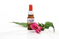 Bottle with Bach Flower Stock Remedy, Impatiens