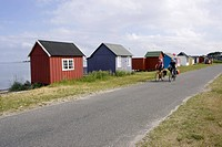 Denmark, Mountainbikers riding across coastal highway