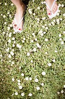 Woman's feet on flowered grass