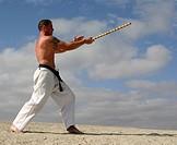 martial art 22