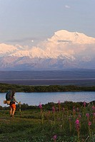 Female backpacker on tundra above McKinley River Denali National Park w/Mt Mckinley AK Range