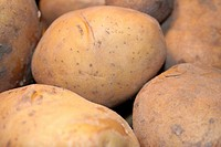 Kartoffeln 1