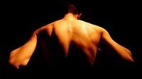 Rückenpartie