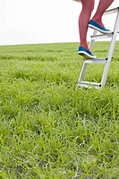 Woman climbing a ladder in a field