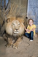 Girl stroking a stuffed lion