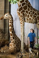 Boy standing beneath a giraffe
