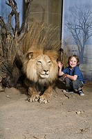 Boy stroking a stuffed lion at museum