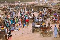 AN AFRICAN SCENE Market in Dagana, Senegal.