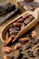 COCOA Cocoa beans.