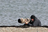 PHOTOGRAPHER Animal photographer, Shetland Islands, Scotland.