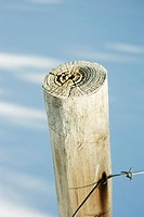 Wooden post with barbed wire, snow in background, close-up
