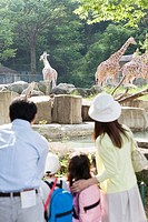 Family with Two Children in Zoo, Looking at Giraffes