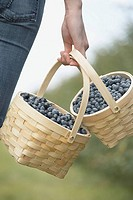Woman carrying baskets of blueberries