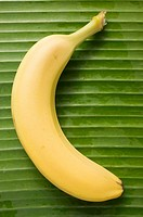 A banana on leaf