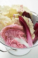 Various types of radicchio leaves in colander