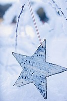 Star on a snowy branch out of doors