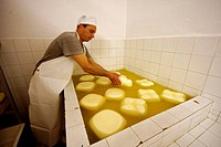 Traditional cheese-making in Es Tudons farmstead, Ciutadella. Minorca, Balearic Islands, Spain