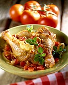 Fricassée of chicken, tomatoes and basil
