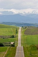 Long hilly road throuhg foothills leading to snow capped. Rocky Mountains. Alberta. Canada