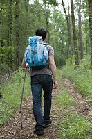 Asian man hiking in forest with backpack