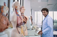 Mixed race scientist in laboratory with anatomical models