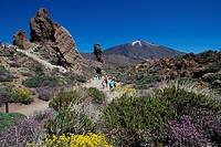 Los Roques and Teide Volcano, Parque Nacional del Teide, Tenerife, Canary Islands, Spain, Europe