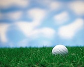 Golf ball on grass.