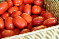 Plum tomatoes displayed at Union Square Farmer's Market, New York City, USA