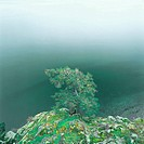 Canada, British Columbia, Gibsons, Sunshine Coast, lake, rocks, tree, abandoned, autumn,