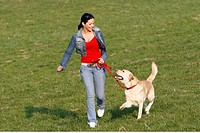 Young woman walking with Labrador Dog over a meadow