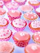 Cupcakes Fairy Cakes