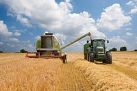 Combine and tractor in barley field