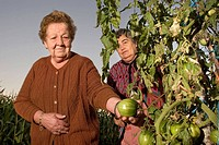 Two sisters visit her garden and watch the tomatoes