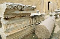 Fallen colonade, Severan Basilica, Leptis Magna, Libya