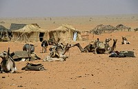 Desert village scene , Malha N. Darfur, Sudan