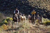 Cowboys with horses, wildwest, Oregon, USA